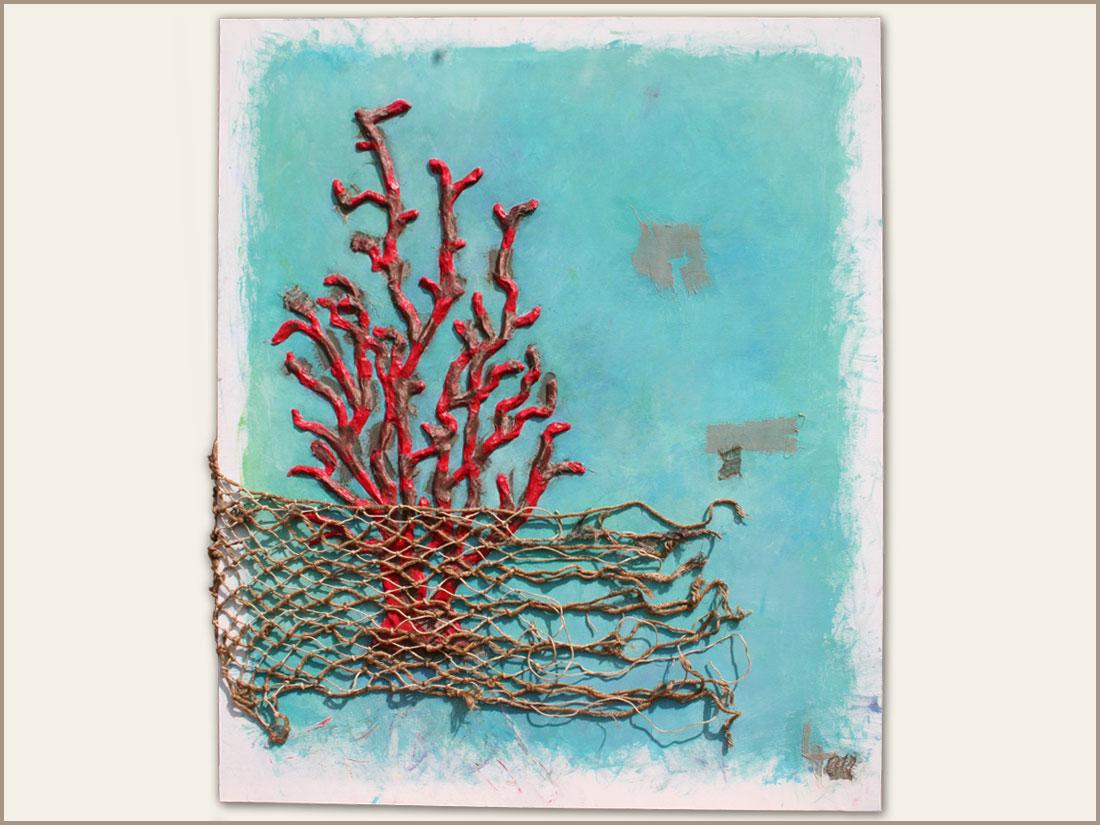 Corallo: Terra madre degli oceani, un animale cosi particolare